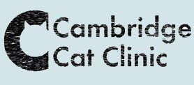 Cambridge Cat Clinic - A feline-only vet practice in Cambridge