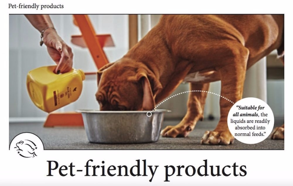 Aloe Vera for animals - and owners too!