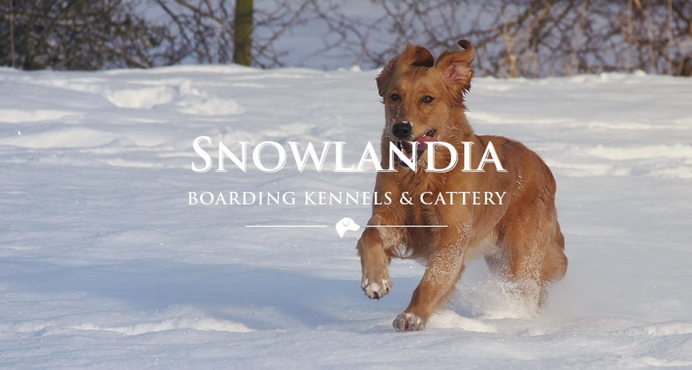 Snowlandia Boarding Kennels and Cattery