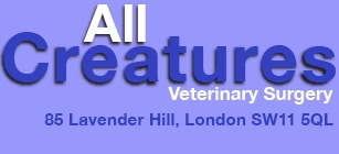 All Creatures Veterinary Surgery - Lavender Hill