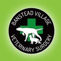 Banstead Village Vet- Surgery - VIP Health Club - Dogs over 40kg