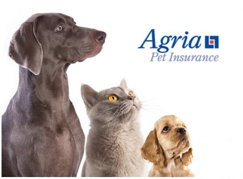 Agria Multipet Insurance Discount for your pets