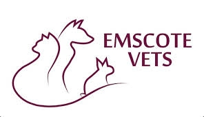 Emscote Vets in Warwick - Microchipping