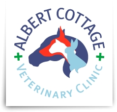 Albert Cottage Vets in Saltash