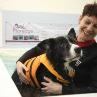 Moredge Canine Centre in Essex - Physiotherapy