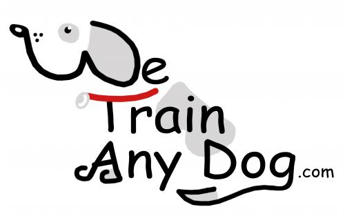 We Train Any Dog - Behaviour & Training Specialist