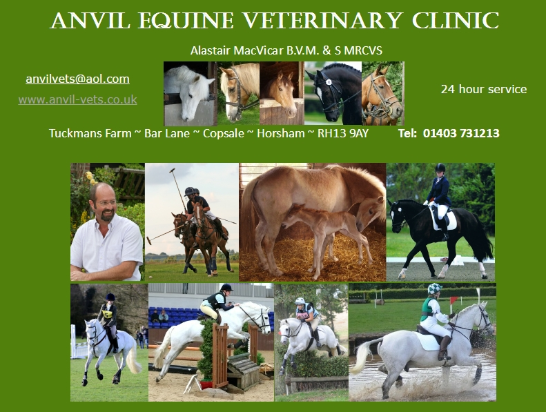 Anvil Equine Vets in Horsham