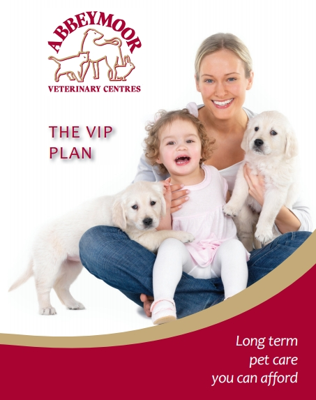 Abbeymoor Vet Practice in Halifax Road in Sheffield - VIP pay monthly plan