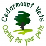 Cedarmount Vets in Bangor - Cat Care Healthplan