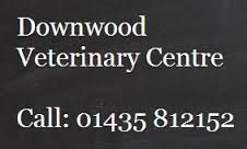 Downwood Veterinary Centre - Acupuncture