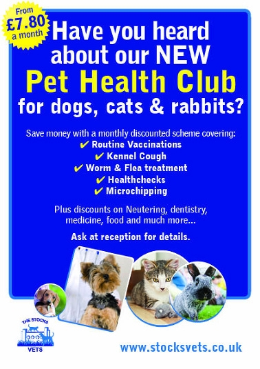 Stocks Vets in Lower Wick - Pet Health Club for cats