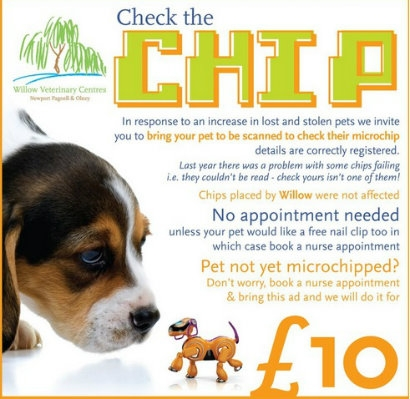 Free microchip check at Willows Vets in Newport Pagnell