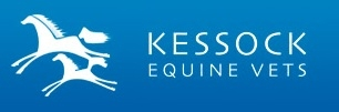Kessock Equine Practice in Inverness - Dentistry