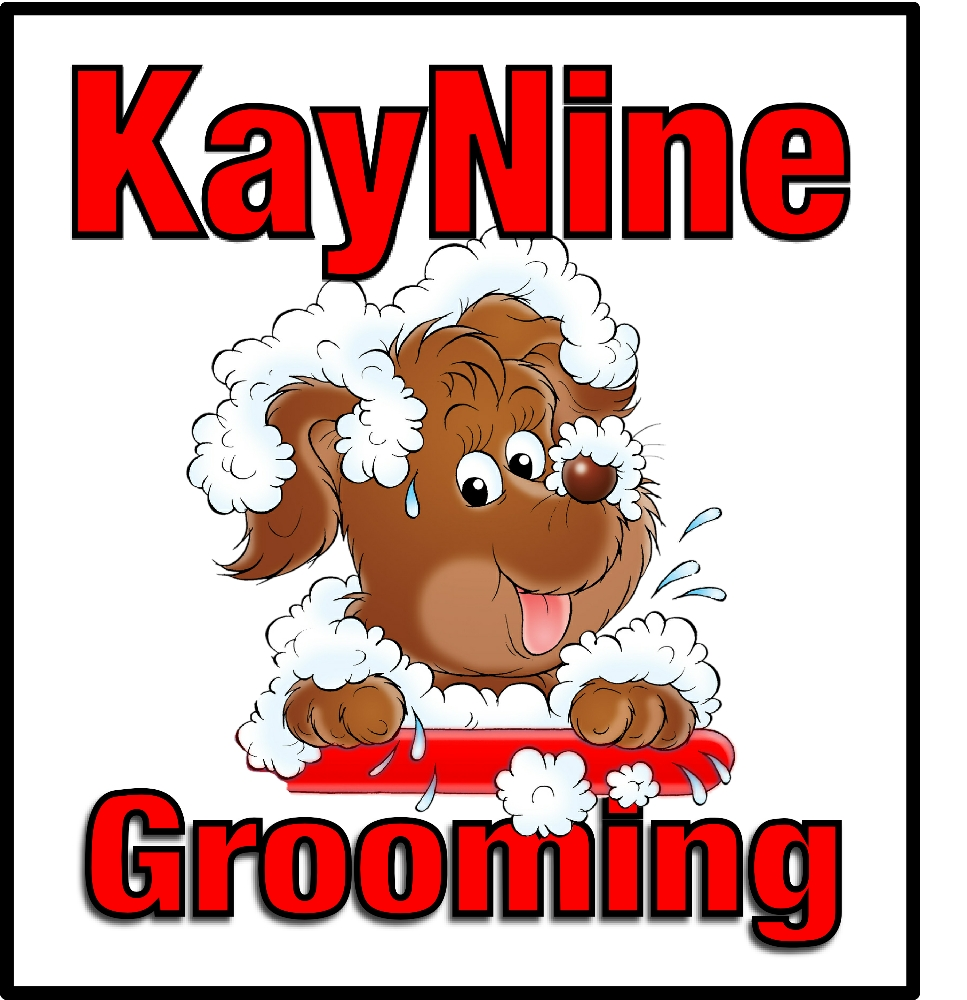 KayNine Grooming in Little Witley