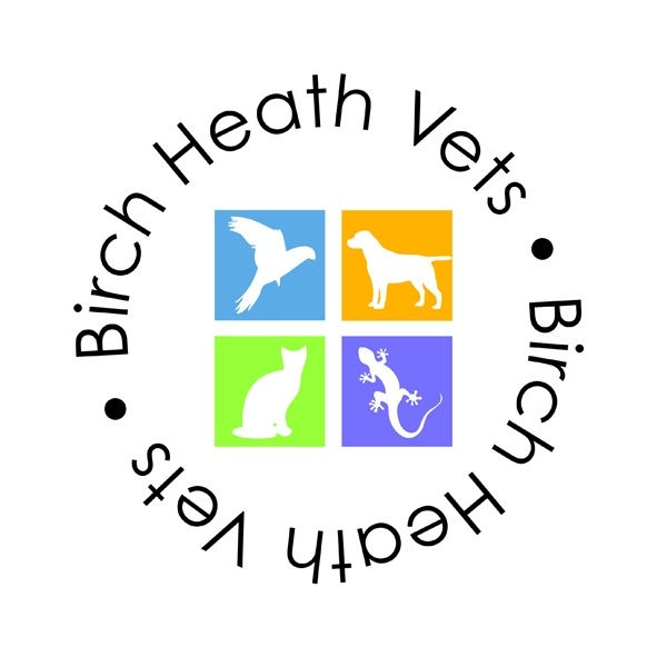 Birch Heath Veterinary Practice - Avian - Parrots and Cage Birds