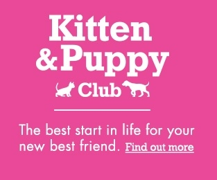 Winchmore Hill Village Vet Practice - Kitten and Puppy Club Offer