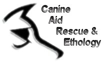 CARE Dog Rescue - Norfolk