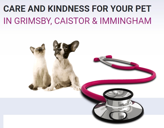 Abbey Vets in Immingham
