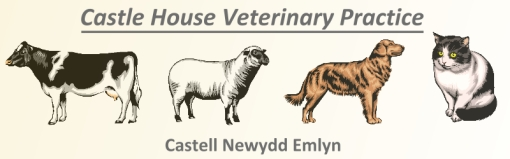 Castle House Vets - Newcastle Emlyn
