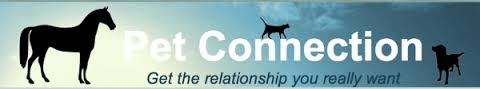 Donna Skinsley - Qualified equine behaviourist - Pet Connection