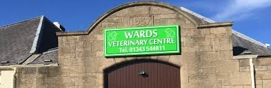 Wards Veterinary Centre in Elgin - Acupuncture