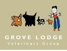 Grove Lodge Vets in Lancing
