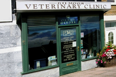 Moor Veterinary Clinic in Spennymoor Durham