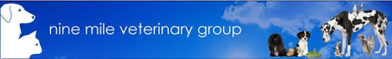 Emmview Veterinary Practice - Wokingham - Nine Mile Vet Group