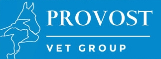 Provost Vets in Newport