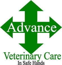 Advance Veterinary Care - Pet Health Plan for cats