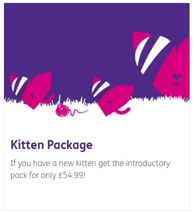 Budget Vets in Tonypandy - Kitten Package Offer