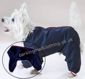 Dog Trouser Suits