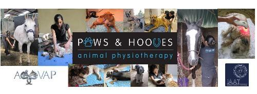 Paws & Hooves Animal Physiotherapy