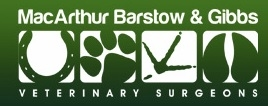 Macarthur Barstow & Gibbs - Droitwich Veterinary Surgery - Equine