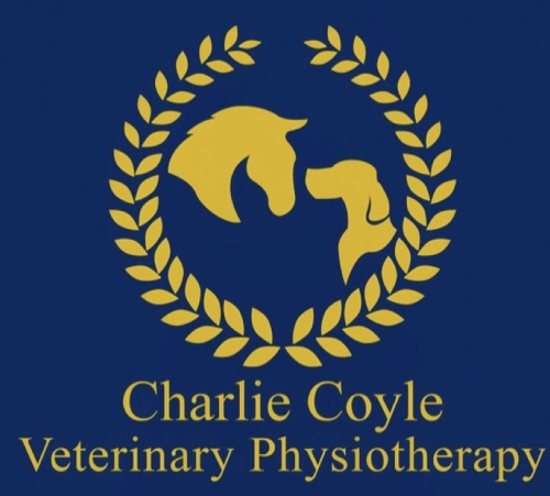 Charlie Coyle Veterinary Physiotherapy