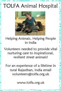 Nurturing Volunteers Required at TOLFA Charity Hospital in India
