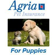 Agria Puppy Insurance - 4 weeks free with vaccinations
